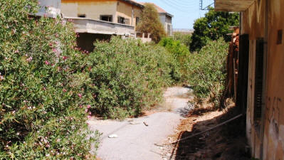 An overgrown street abandoned since 1974 at Varosha, Famagusta, North Cyprus